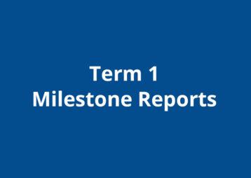 Term1 Milestone Reports